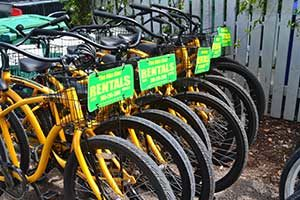 Photo of bikes for rent, lined up out side.